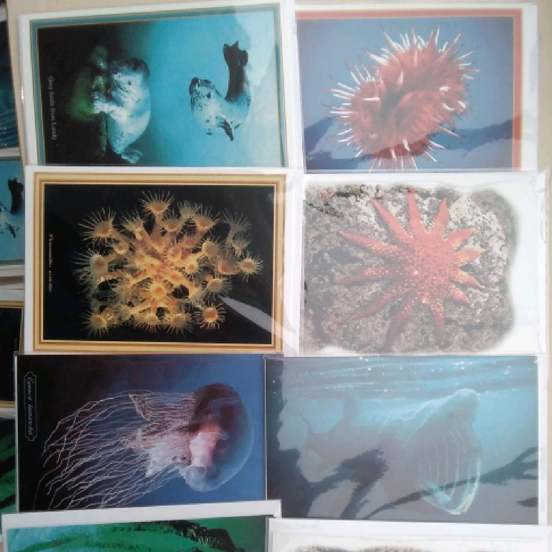 Alan Mildren Cards