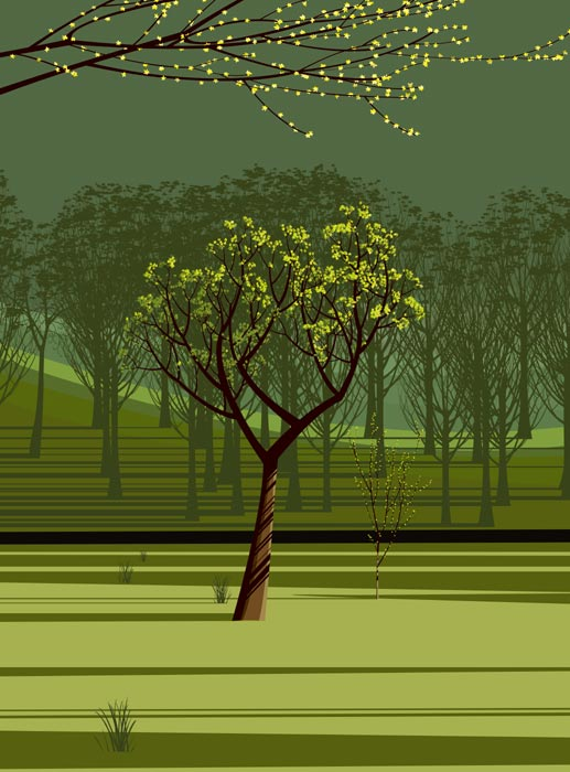 Spring Poplar : Dan Crisp