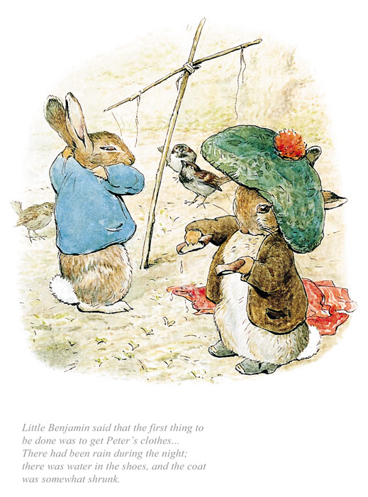 Beatrix Potter Collectors Edition Prints