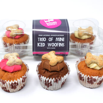 The Barking Bakery Trio of Mini Iced Woofins