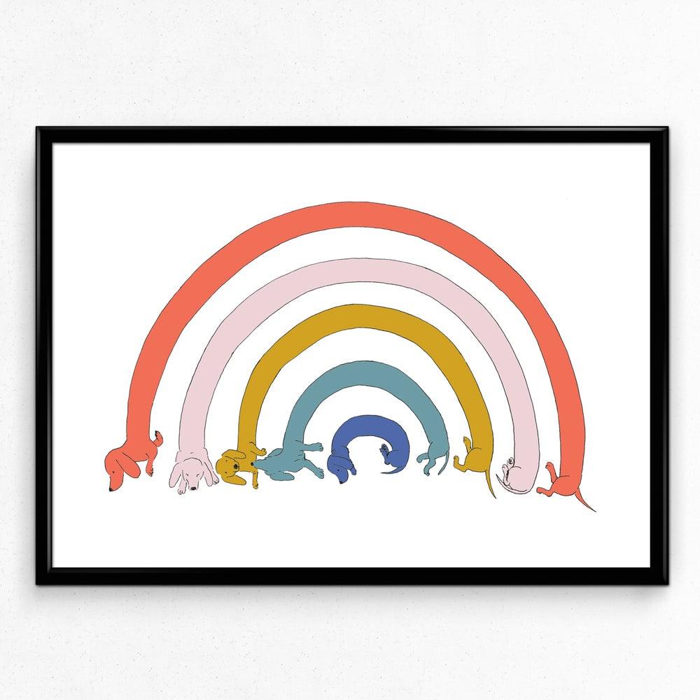 Tabby Rabbit - Dachshund Rainbow, A4 Print