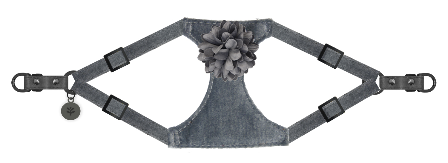 Sötnos Puppy Bow Collection - Harness Velvet Flower Grey