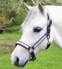 Diamante Nylon Headcollar