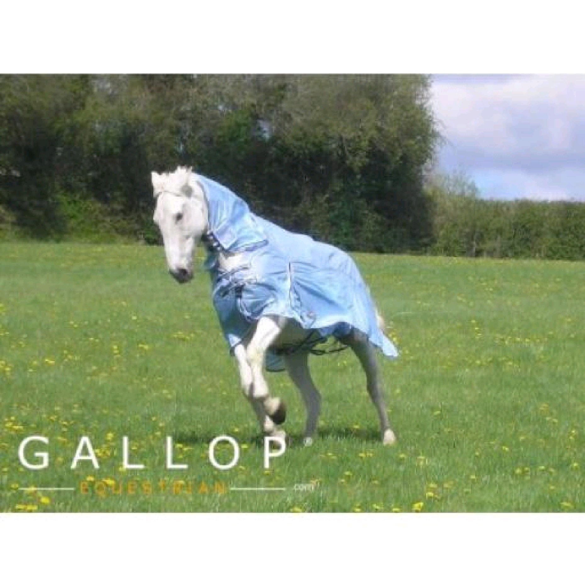 Gallop Shower Proof Fly Rug