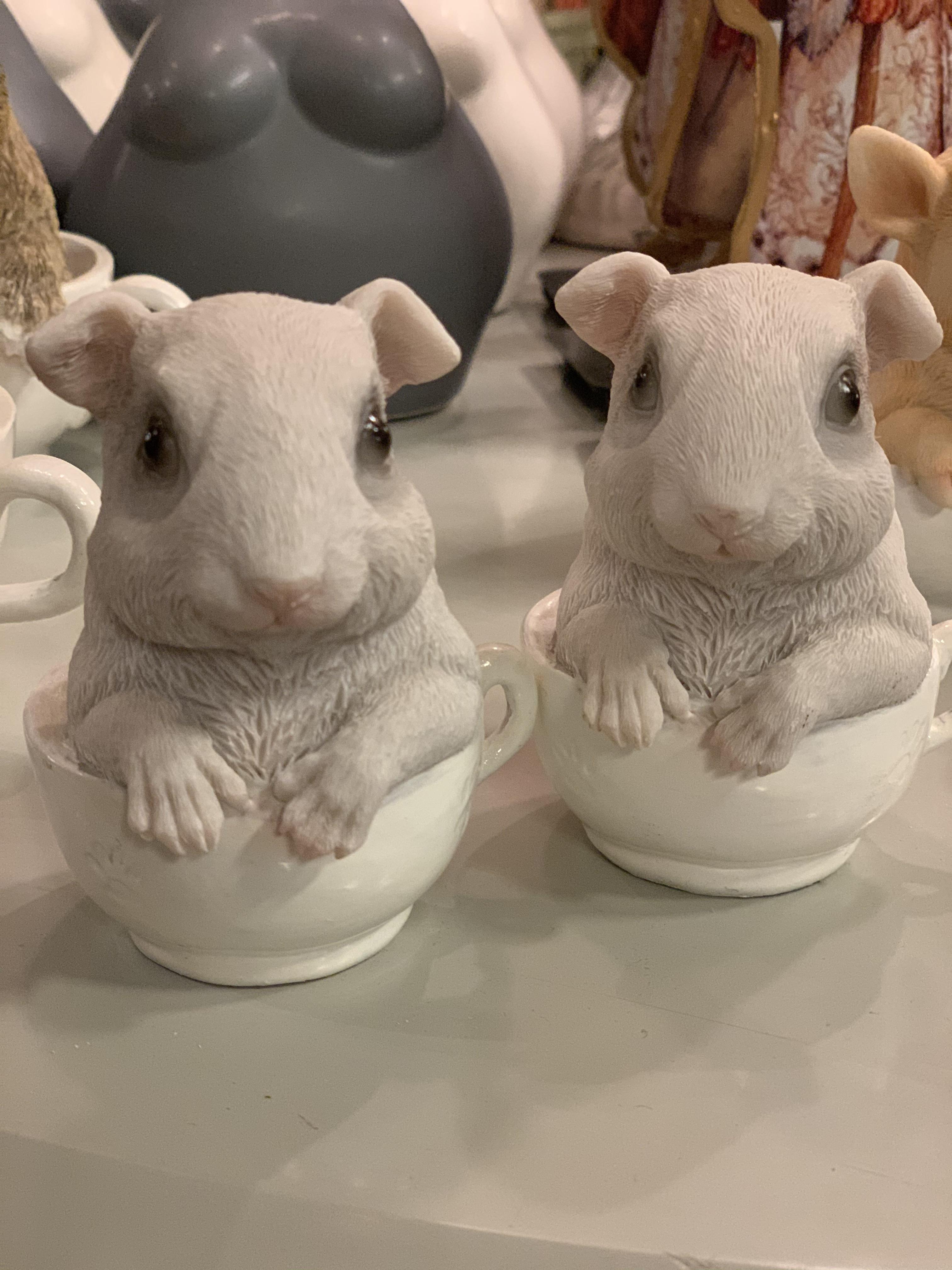 Hamster i Kopp
