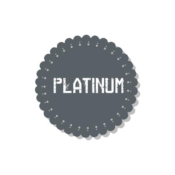 PLATINUM - VSR UPGRADE PACKAGE