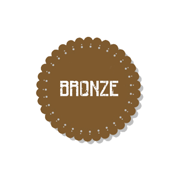 BRONZE - ACTION ARMY AAC T10 UPGRADE PACKAGE