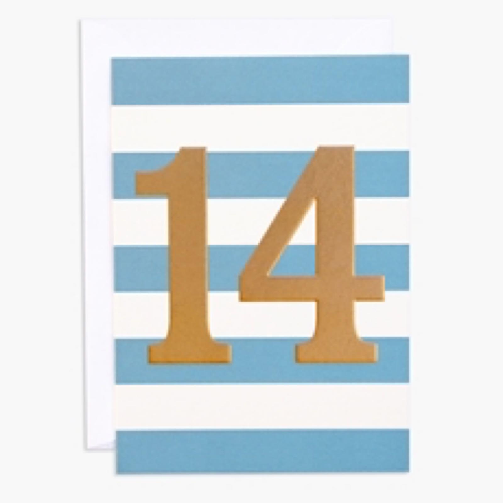 14th Birthday (INK101)