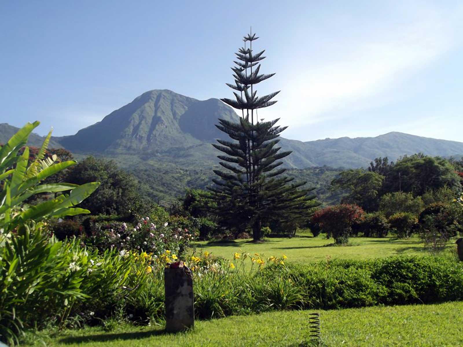 Tanzania Lunji Estate 250g