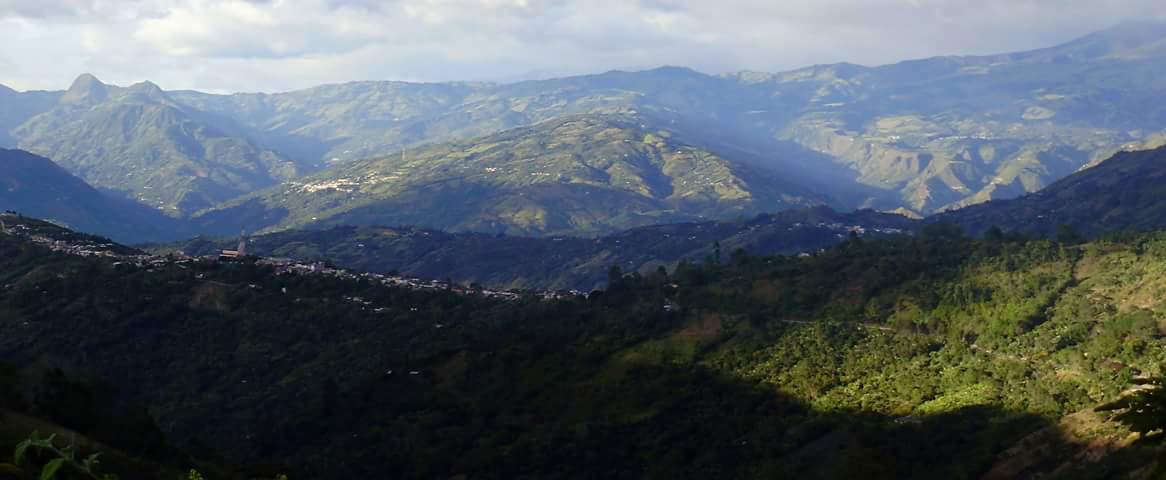 Colombia Narino San Jose Alban 250g