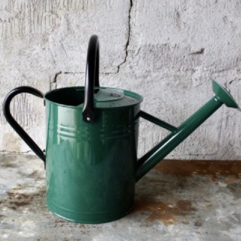Vattenkanna 8L, grön/svart