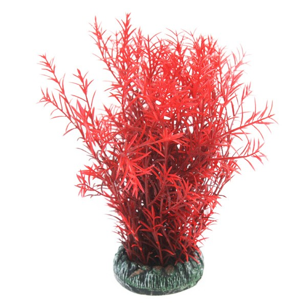 Betta Choice 19cm Round Red Ambula