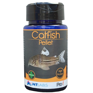 NT Labs Pro - F Catfish Pellet