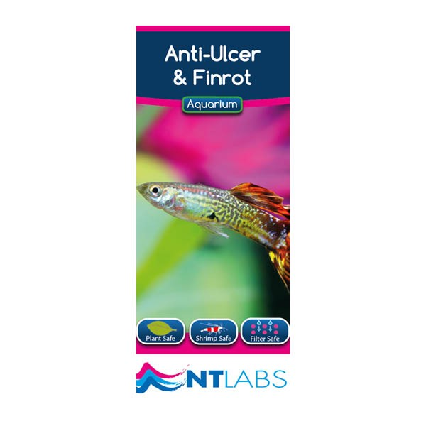 NT Labs Anti Ulcer & Finrot