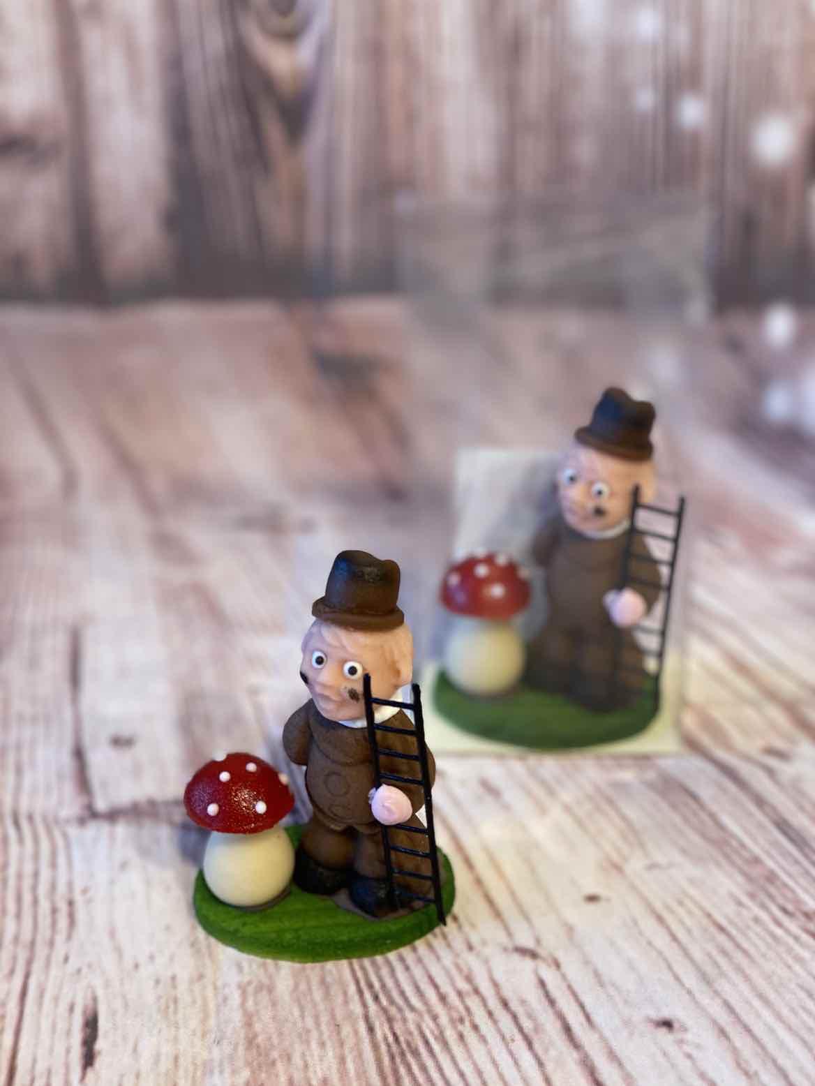Schornsteinfeger mit Pilz