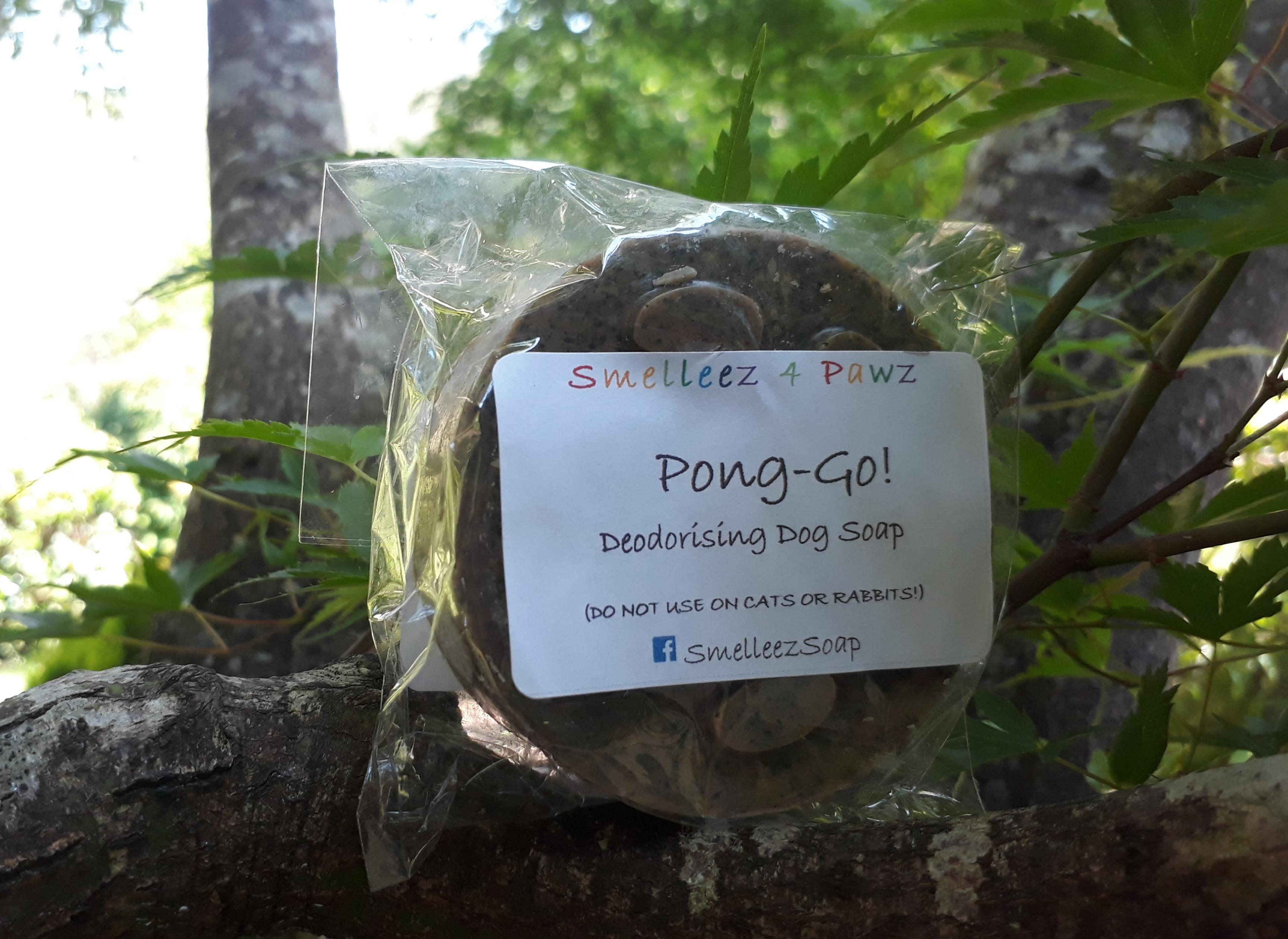 Pong-Go!