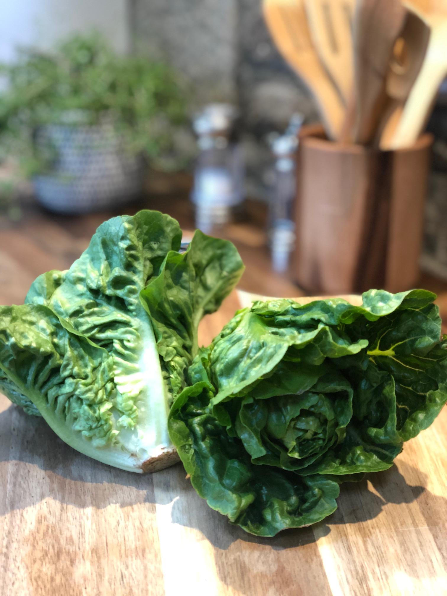 Salad - Little Gem Lettuce