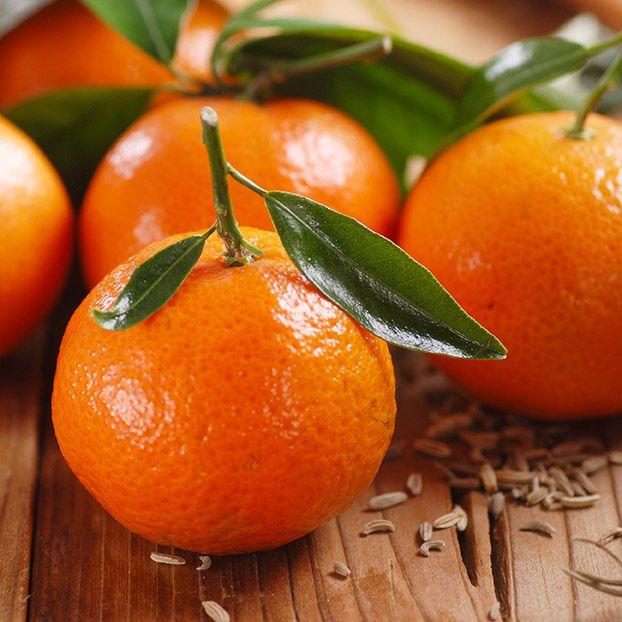Fruit - Clementine
