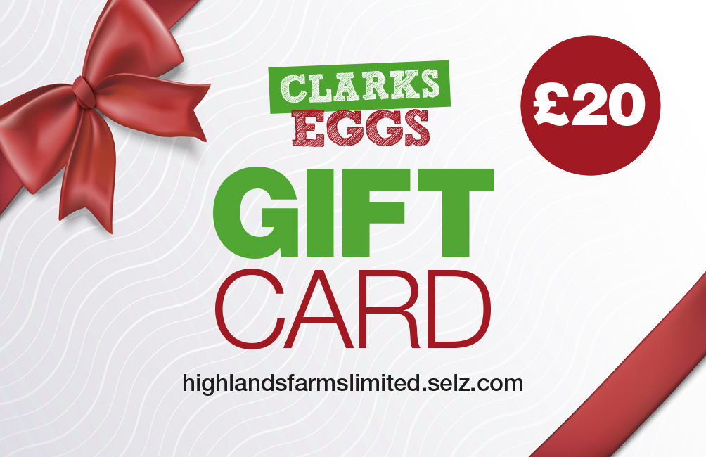 Clarks Gift Card £20