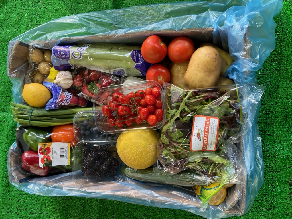 Salad & Fruit Box (15 items)