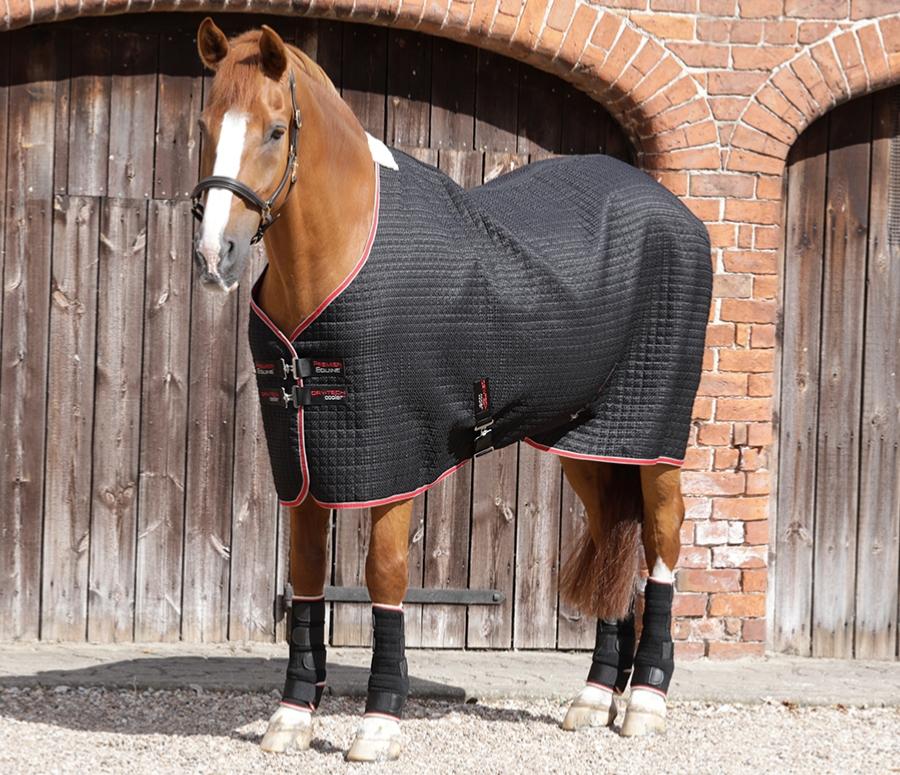 Premier Equine Dry-tech cooler