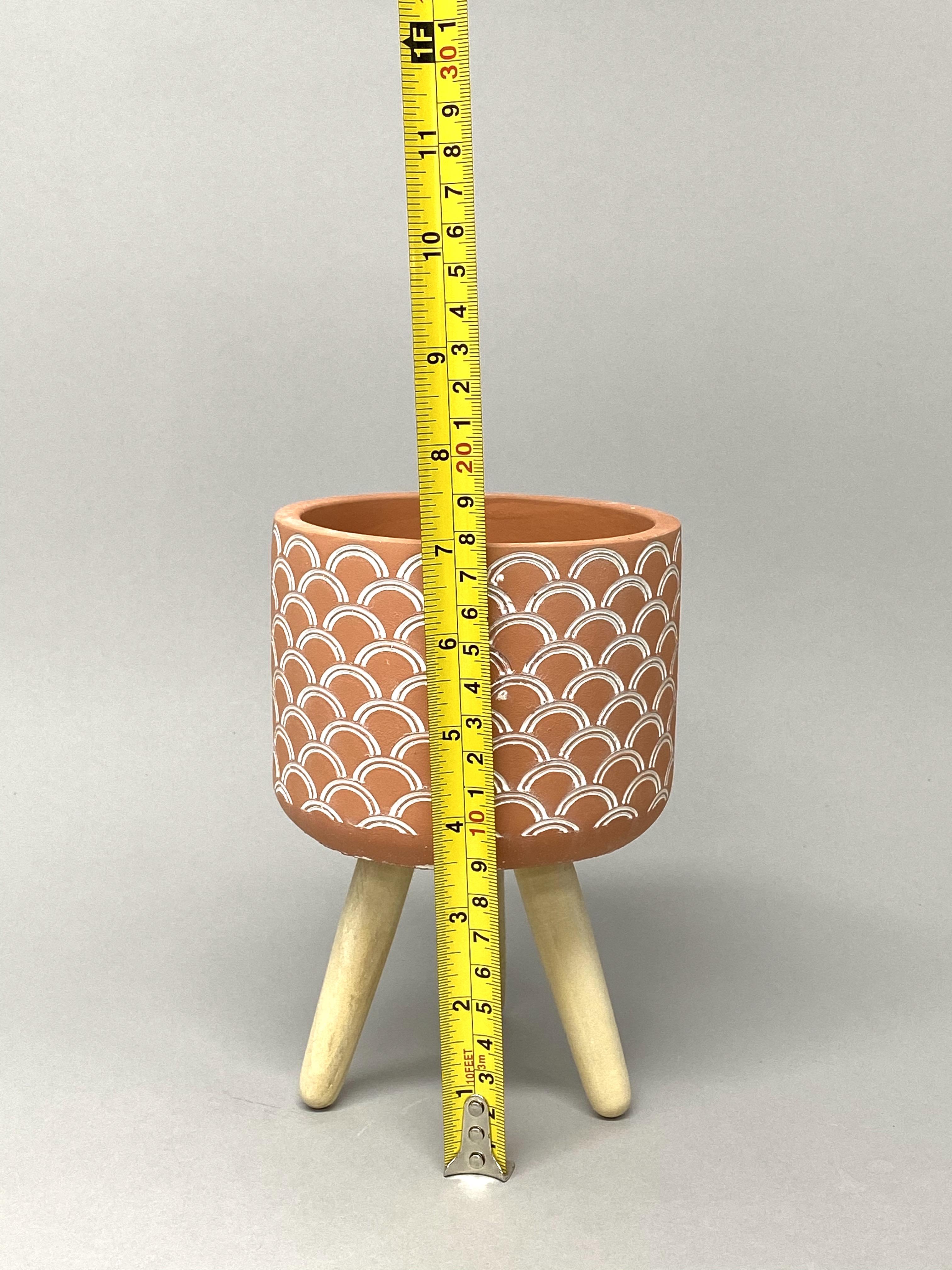 10cm Leggy