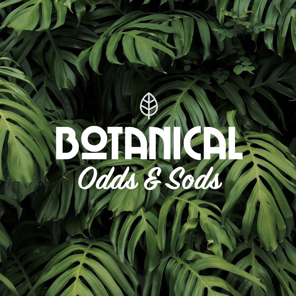 Odds and Sods (up to 50% off retail) FREE SHIPPING