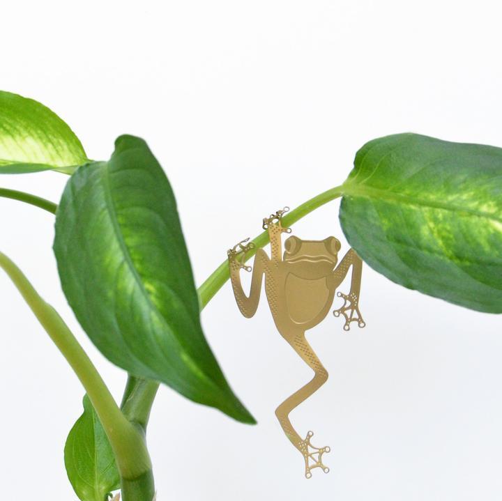 Adorable Plant Animals