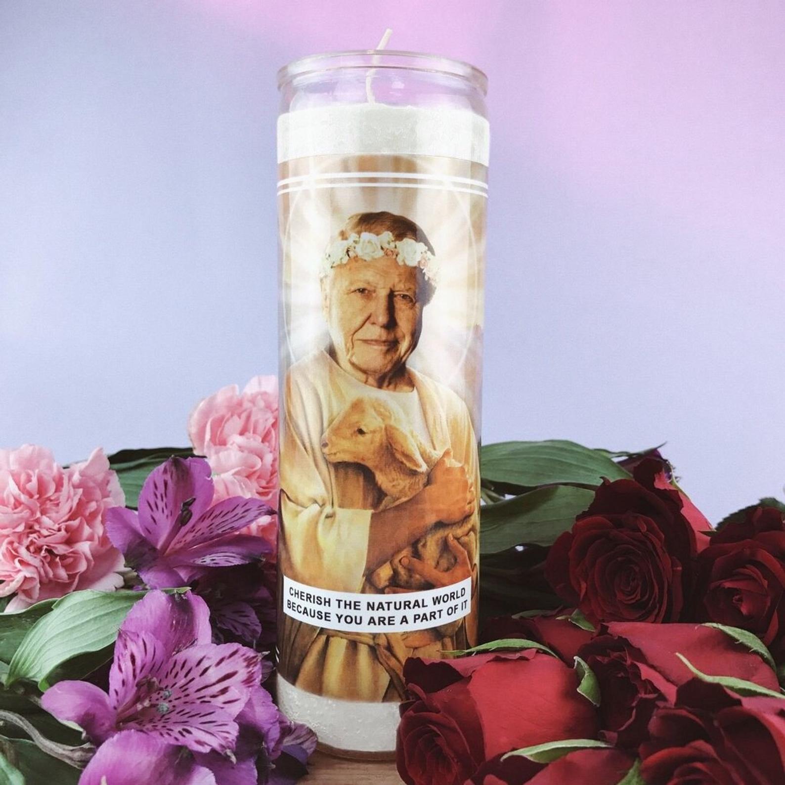 Saint Attenborough Candle