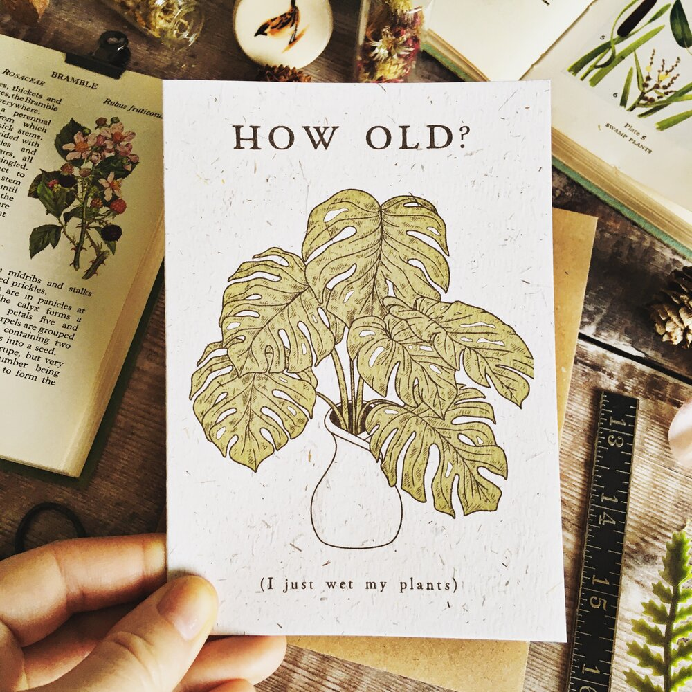 Funny Monstera Birthday Card