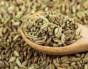 Fennel Seeds (10g)