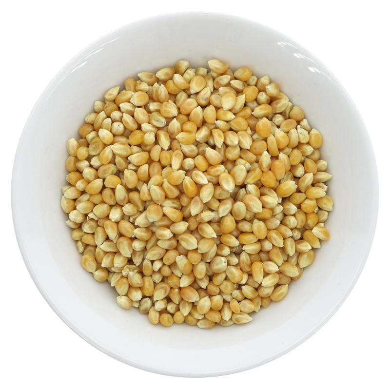 Organic Popcorn Kernels (100g)