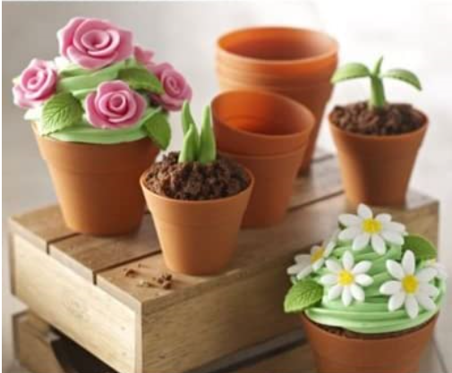 Flowerpot Muffin Cases - Silicone (pack of 6)