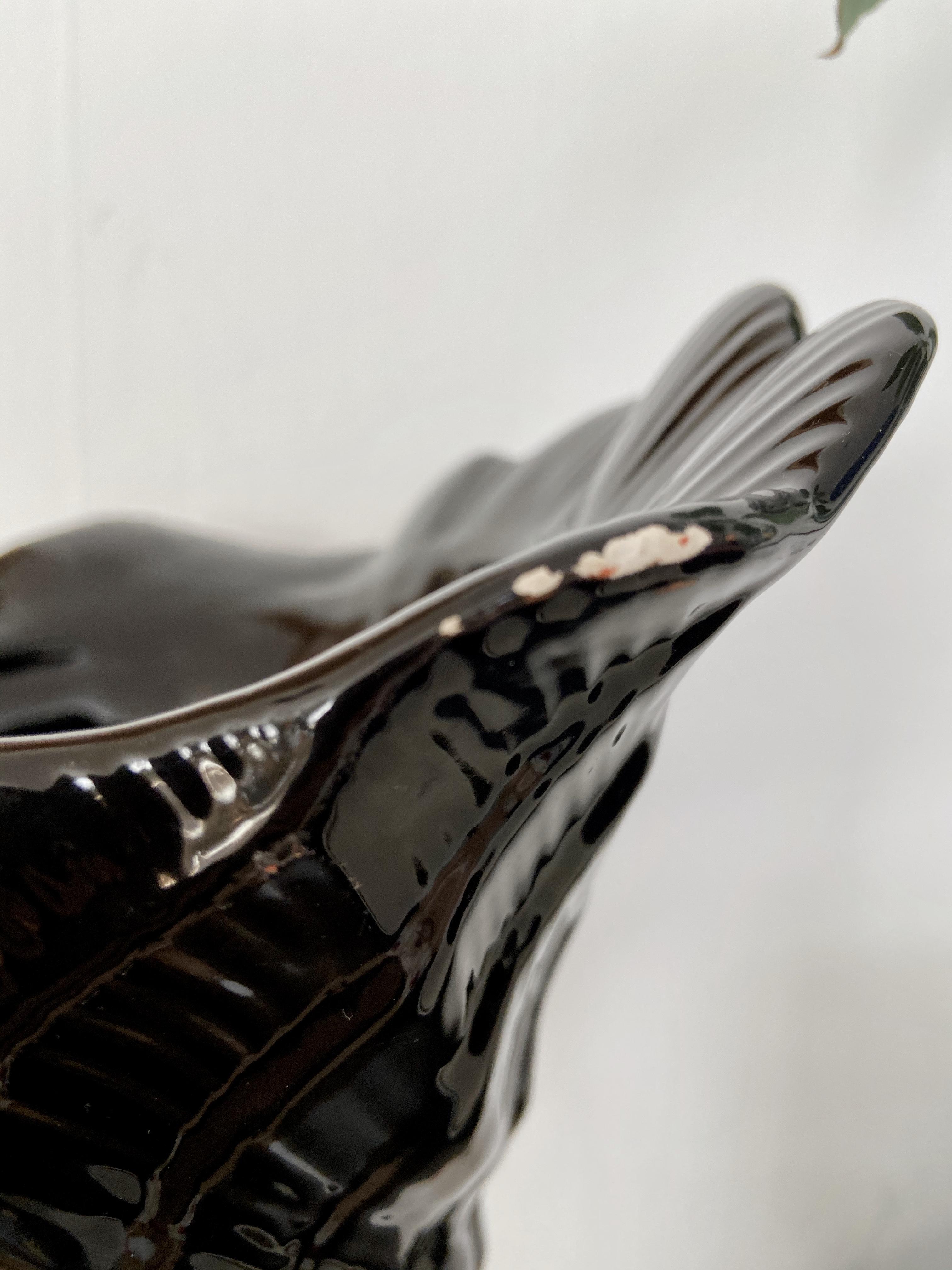 Ytterfoder, svart snäcka