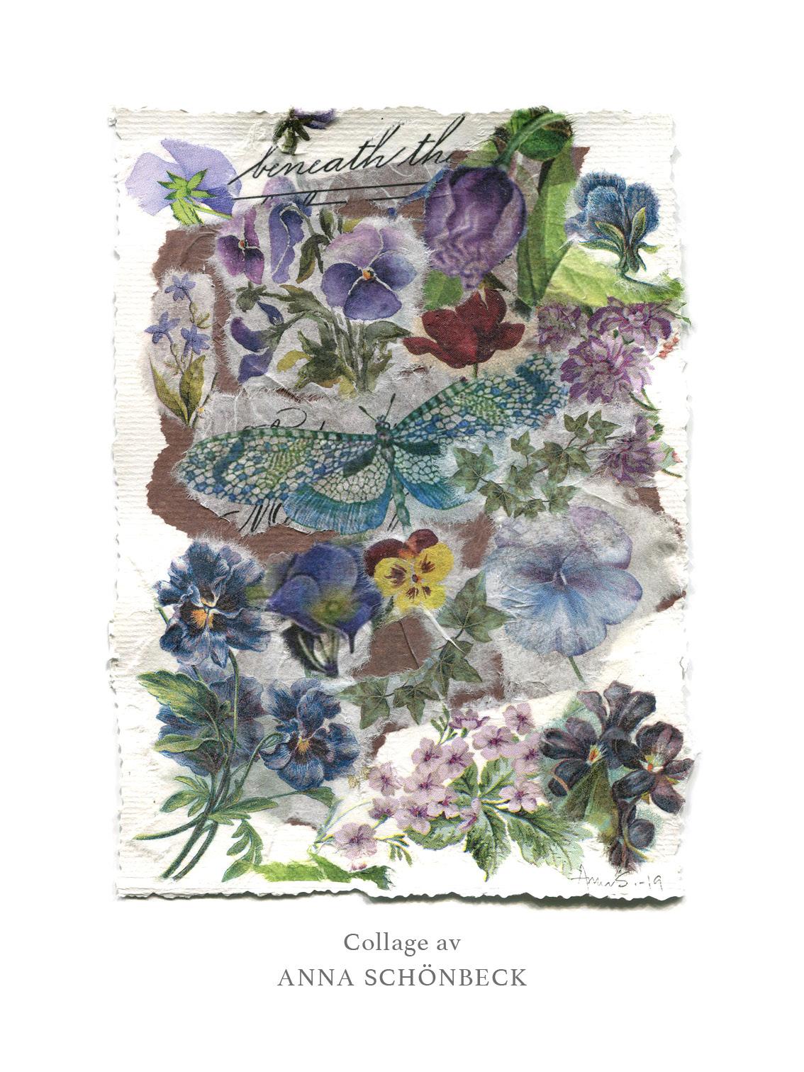 Konstkort / Vykort collage av Anna Schönbeck 3