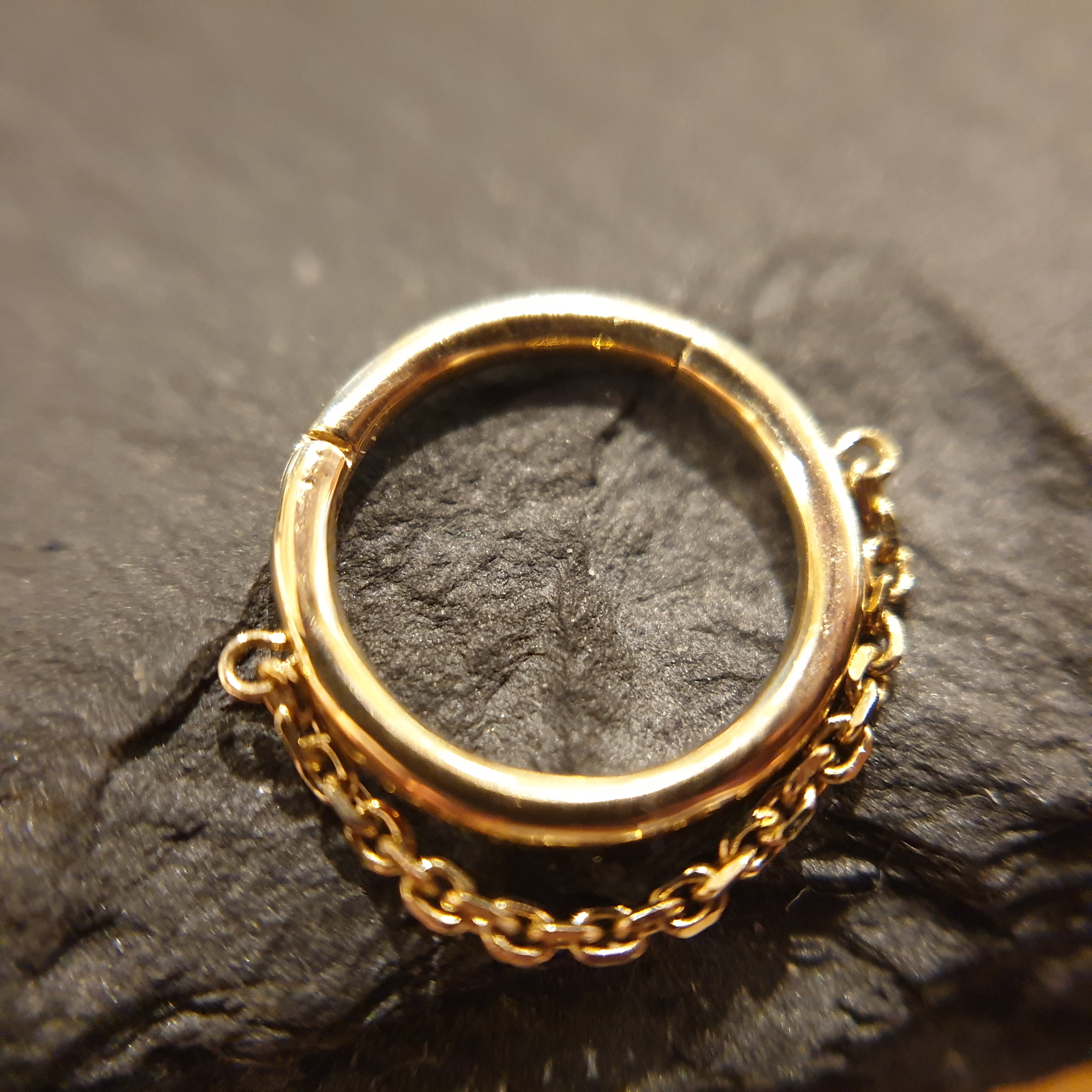 Auris 14k Echtgold Seg. Ring chain YG