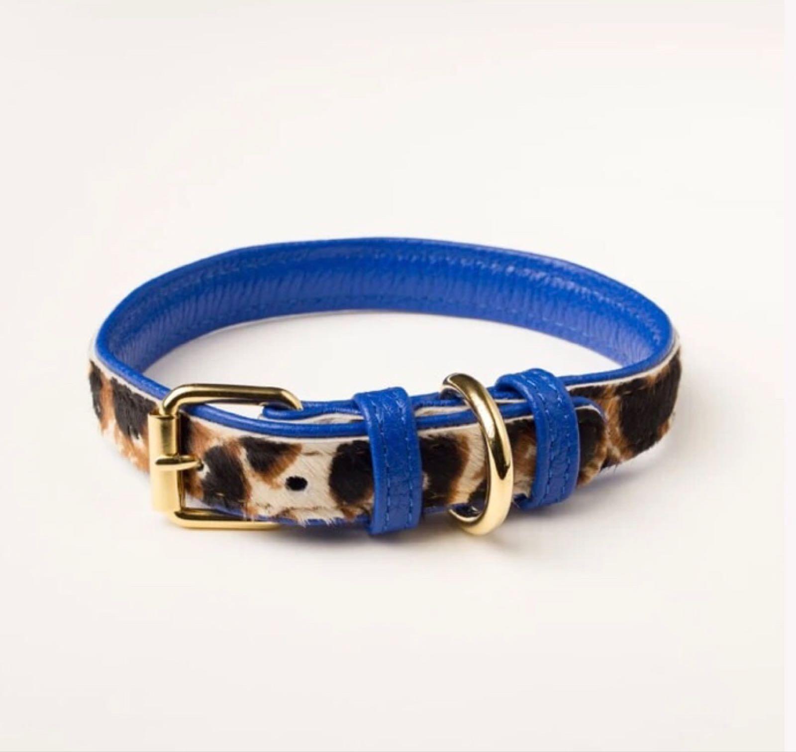 Blue Leopard Collar