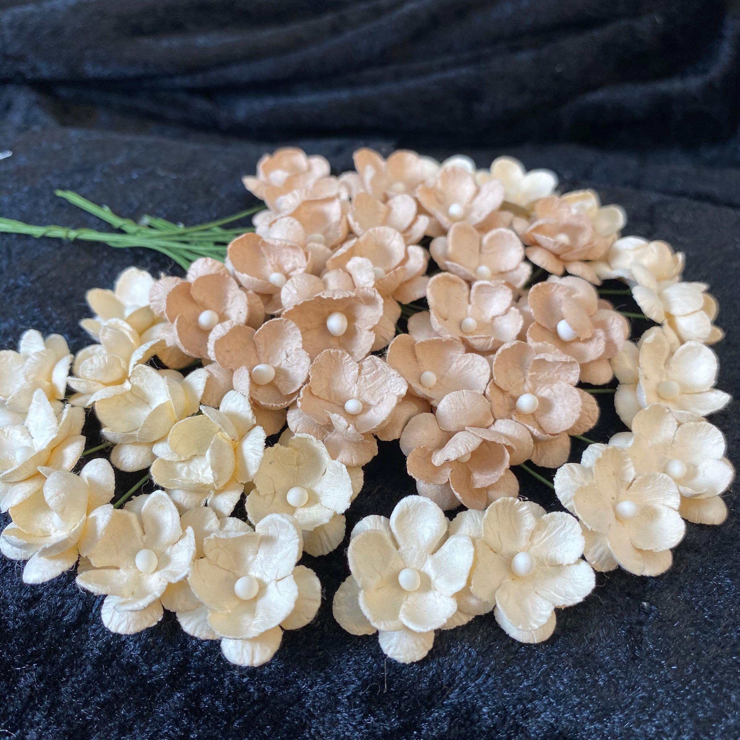 Papirdesign blomster beige /eggehvit med hvit støvbærer 2cm