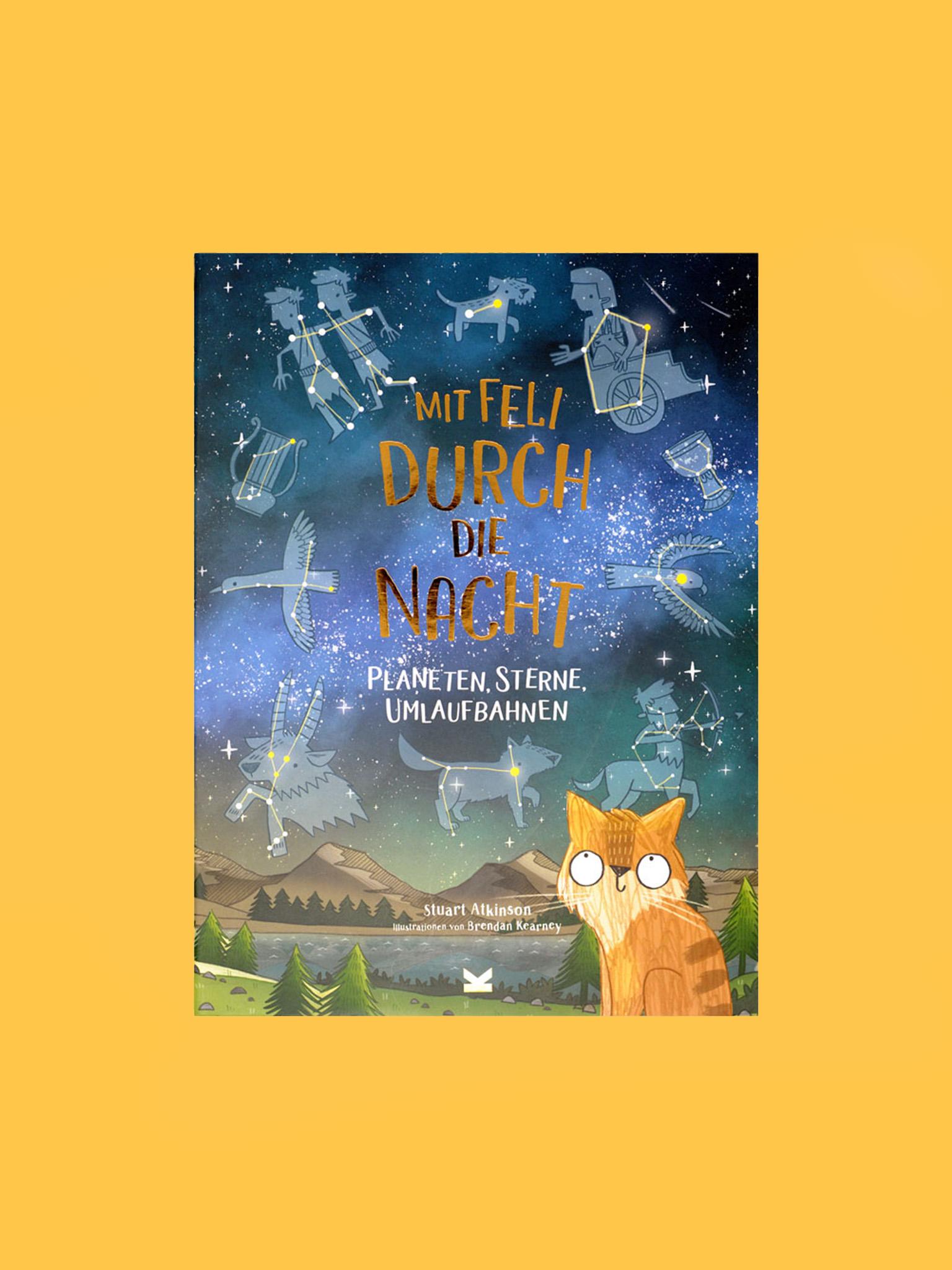Laurence King Buch Mit Feli Durch Die Nacht