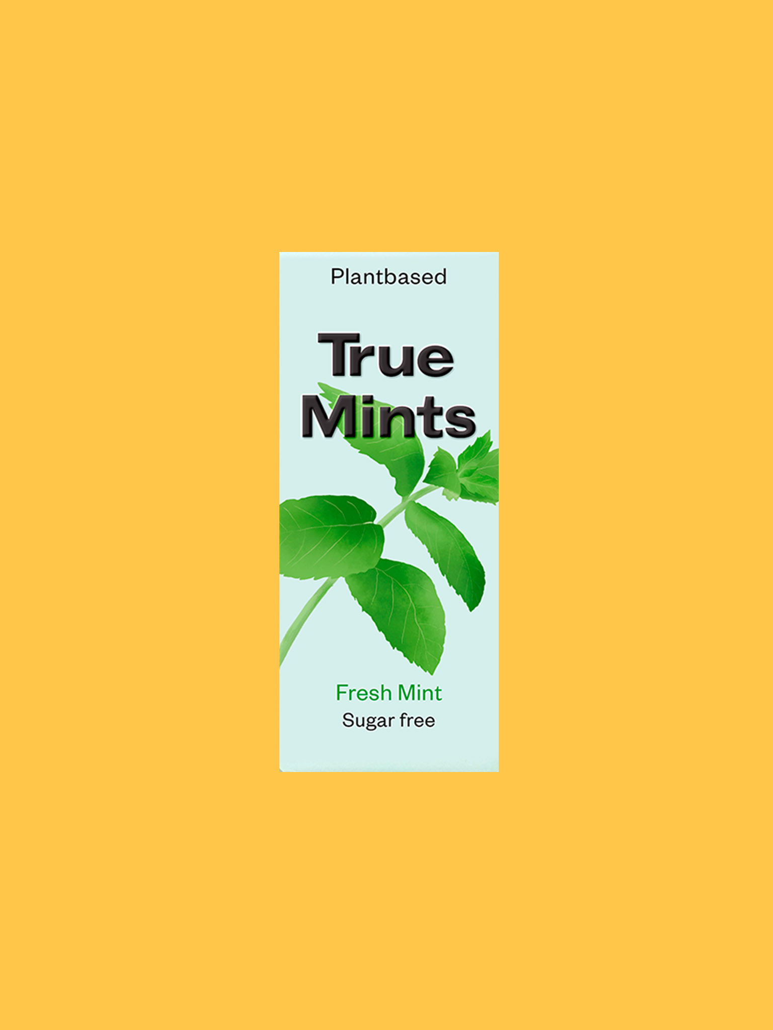 True Mints Frische Minze
