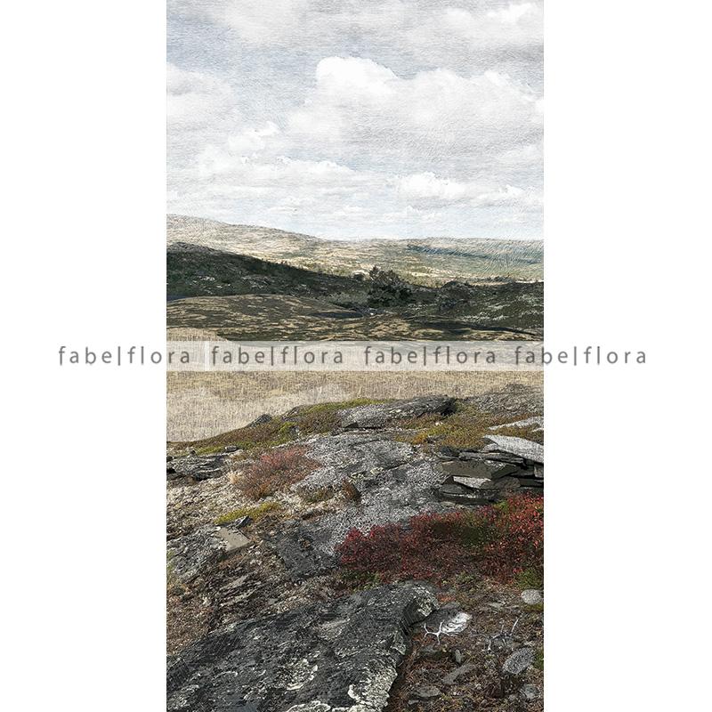 Fragile Landscape 01, 90x170cm