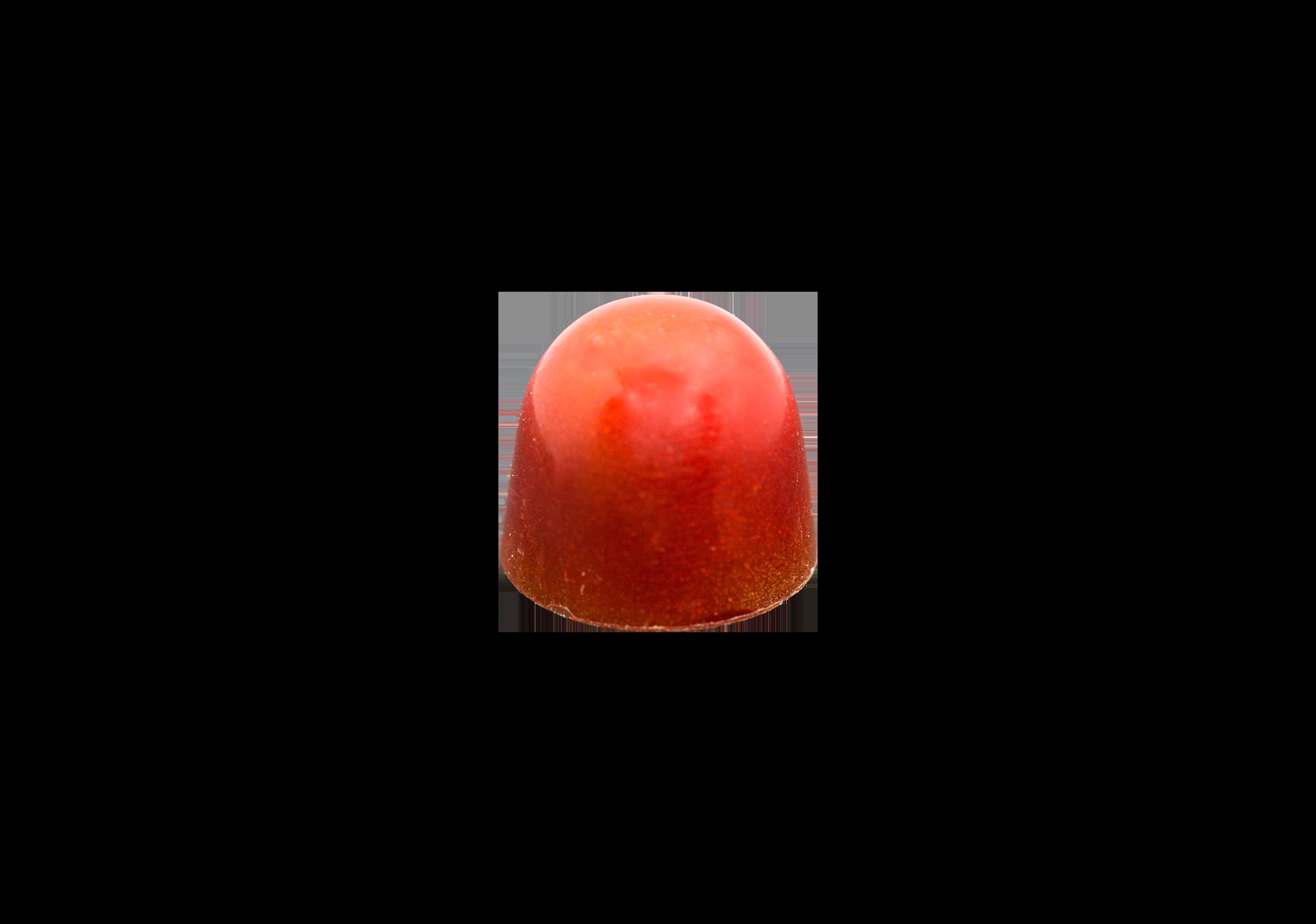 Brecon Rhubarb and Cranberry Gin Milk Chocolate Bon Bon