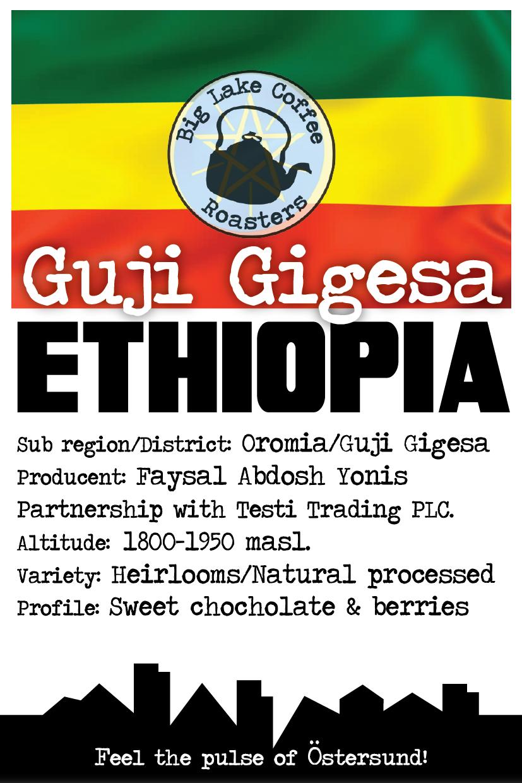 Guji Gigesa, Ethiopia (natural)