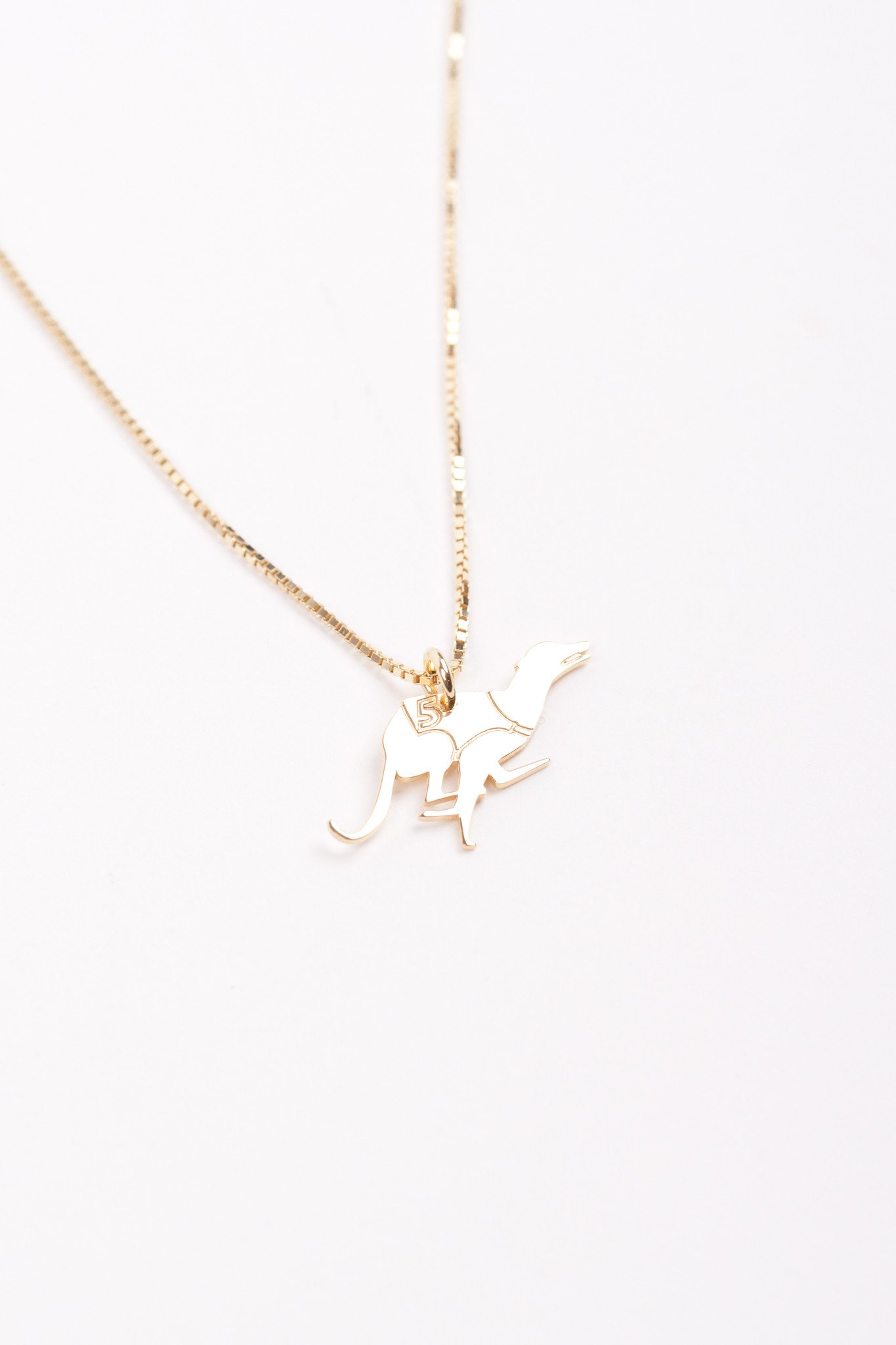 Jukserei - Winning dog necklace