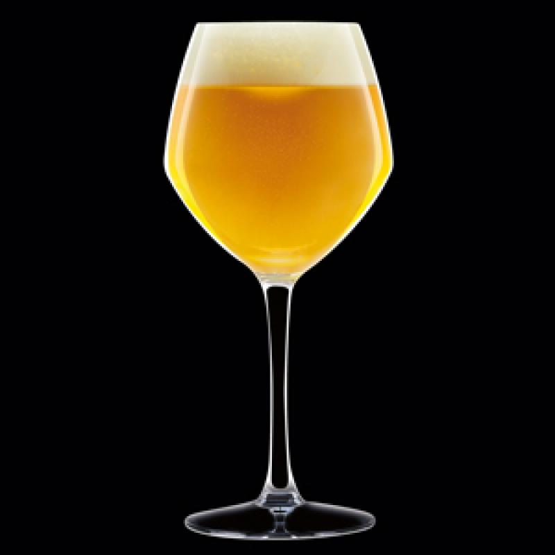Premium Beer Stemglass  470ml