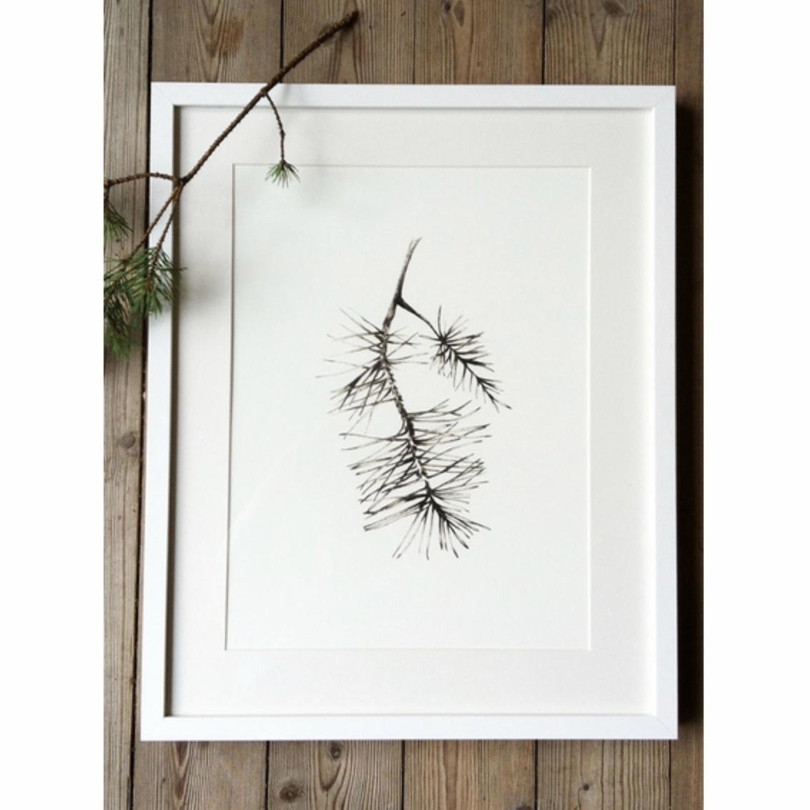 Anna-Lena Rågfälts, Tallbarr print