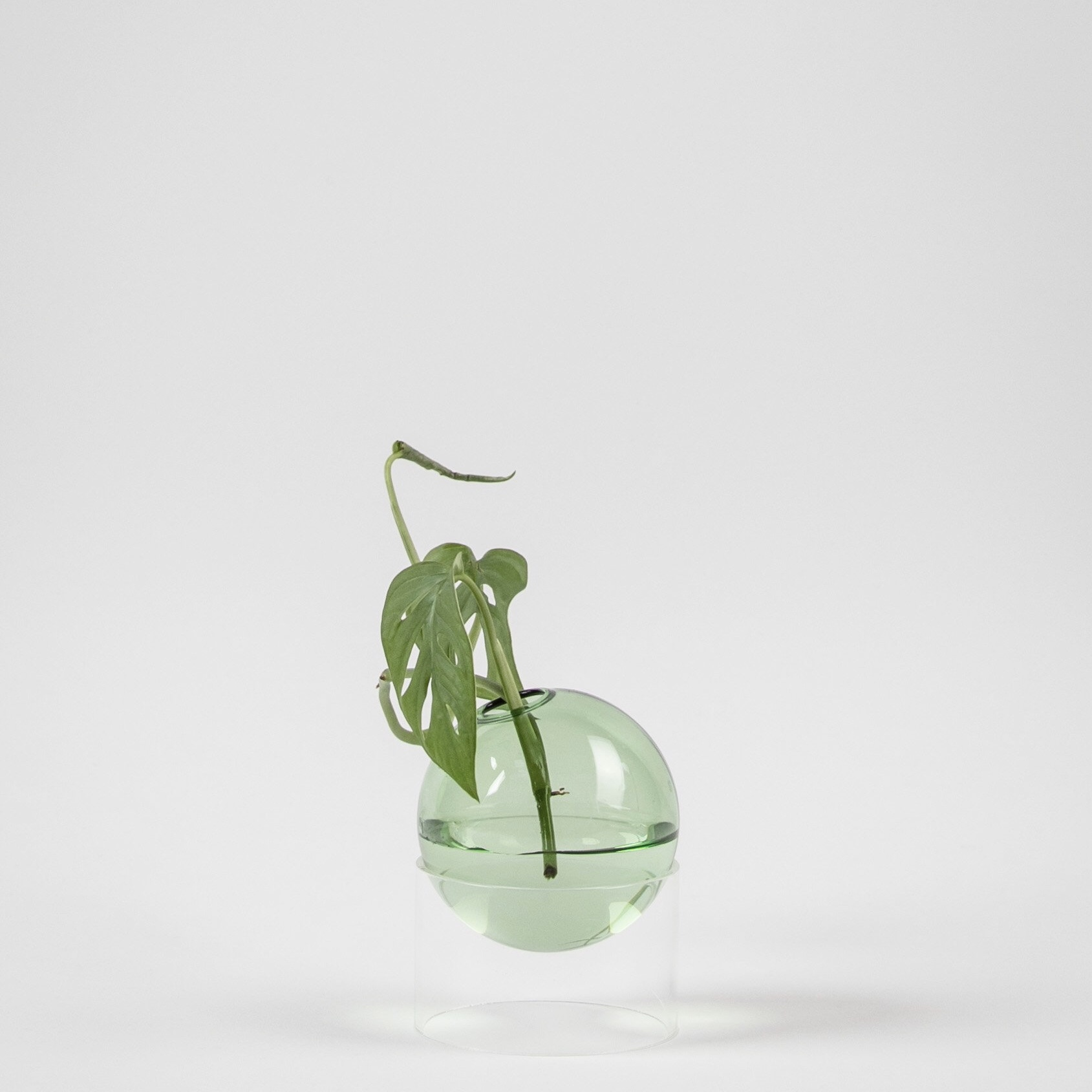 Studio about, Flower bubble standing