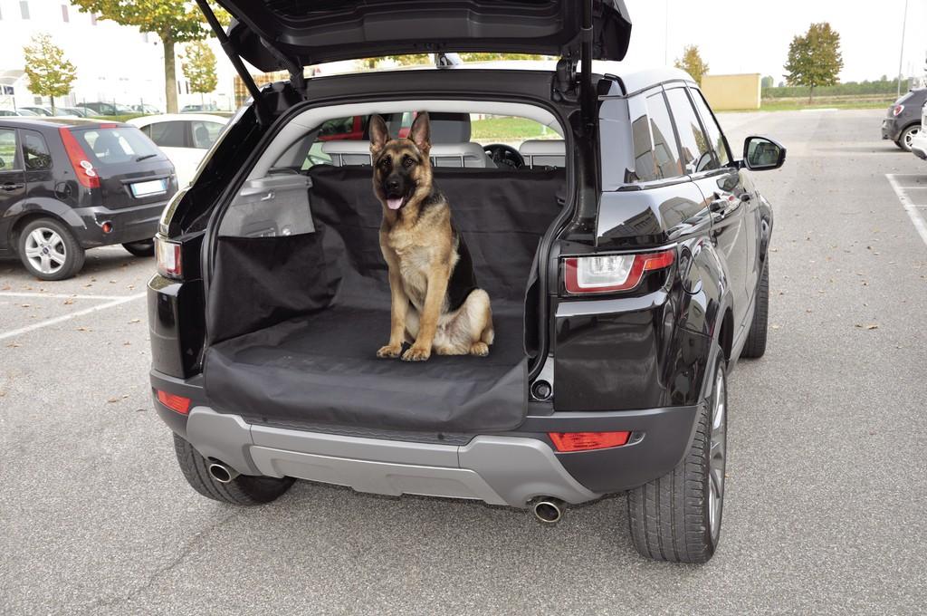 Kofferraum Schutzdecke, schwarz
