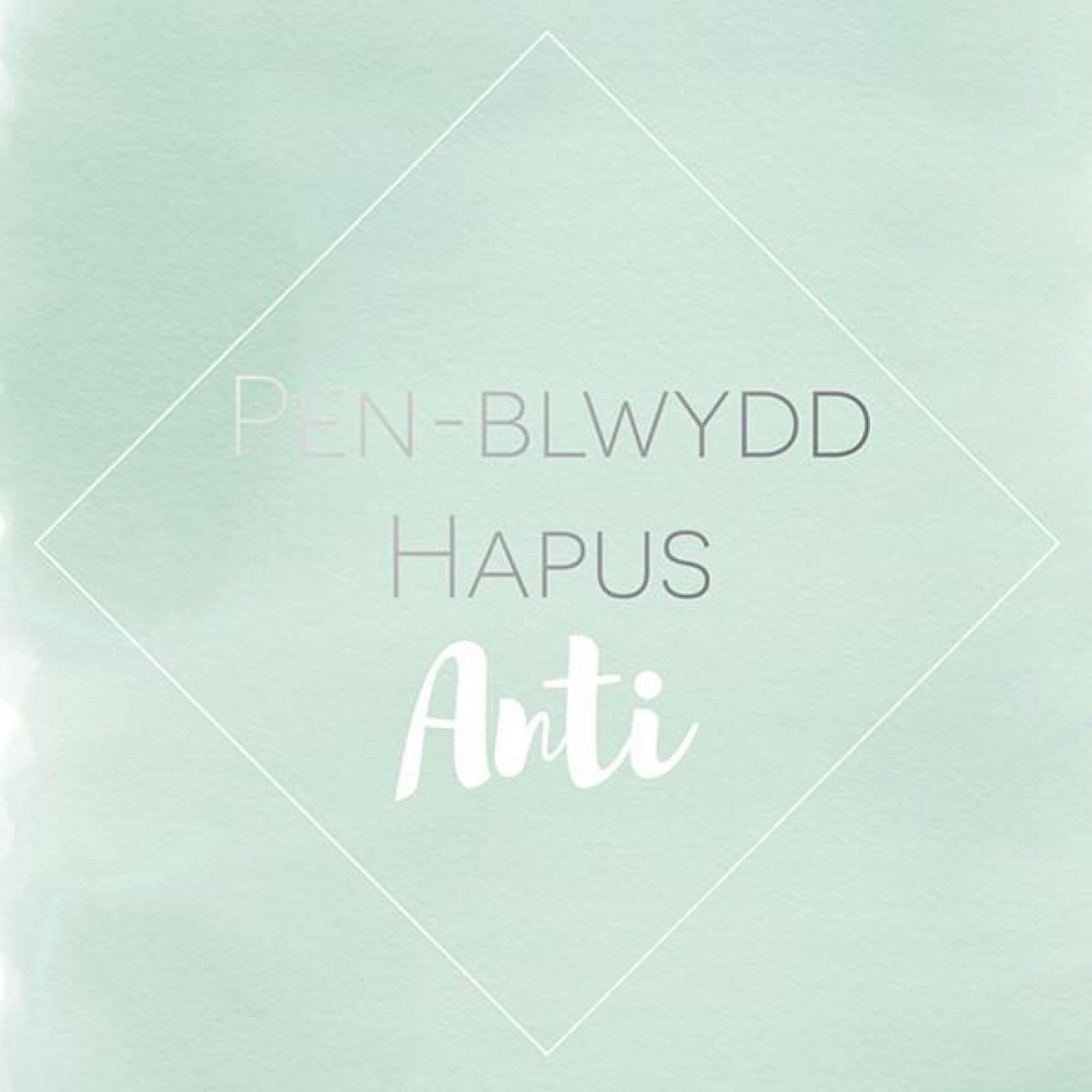 Penblwydd Hapus Anti (SP11)