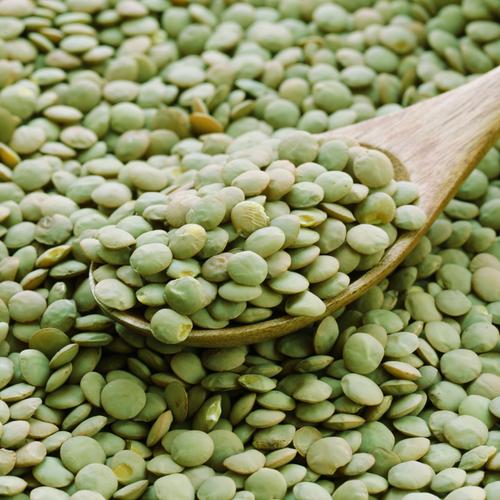 Green Lentils | Organic